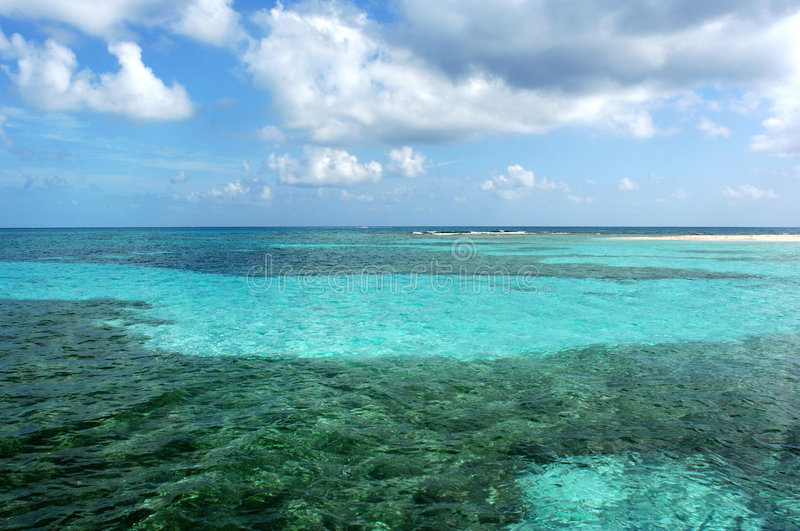 Download The Barrier Reef Royalty Free Stock Photography - Image: 5358227