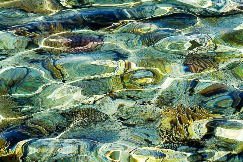 Barriera corallina, rifrazione fotografie stock libere da diritti