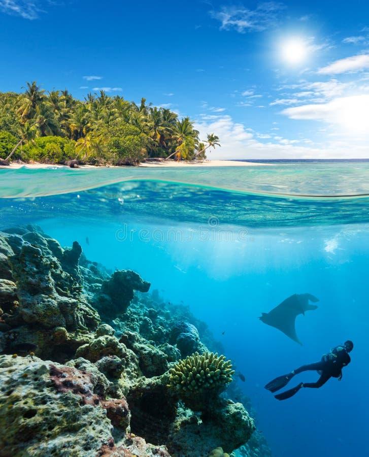 Barriera corallina subacquea con il subaqueo e la manta immagine stock