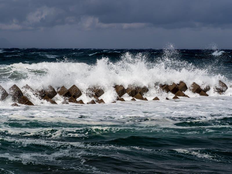 Barriera dei tsunami nel Giappone immagini stock libere da diritti