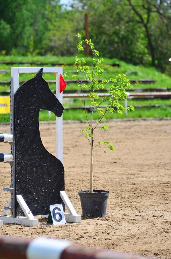 Barriera per i cavalli di salto immagini stock