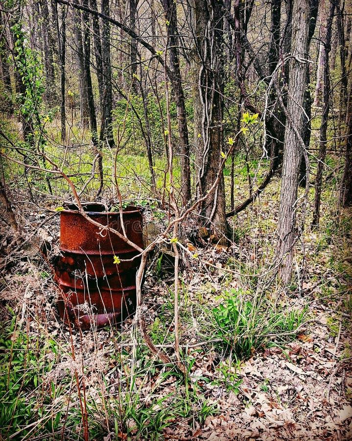 Barril de la quemadura en el bosque fotografía de archivo libre de regalías