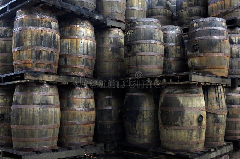 Barril de ron viejo en una destilería imagen de archivo libre de regalías