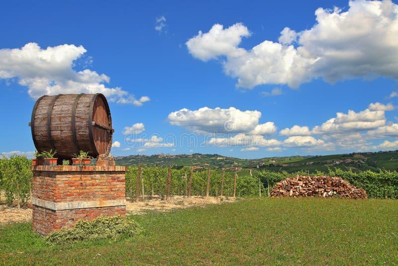 Barril de vino y viñedos en Piamonte, Italia. fotos de archivo libres de regalías