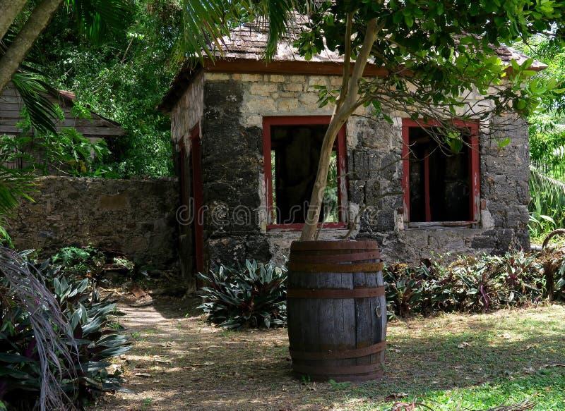 Barril del ron y ruinas tropicales fotografía de archivo libre de regalías