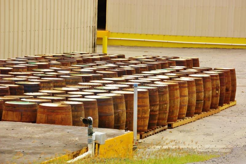 Barriles cruzan de la destilería del ron del usvi del croix del St fotos de archivo