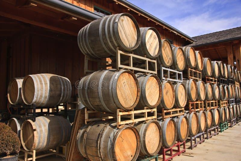 Barriles de vino del roble imagen de archivo libre de regalías