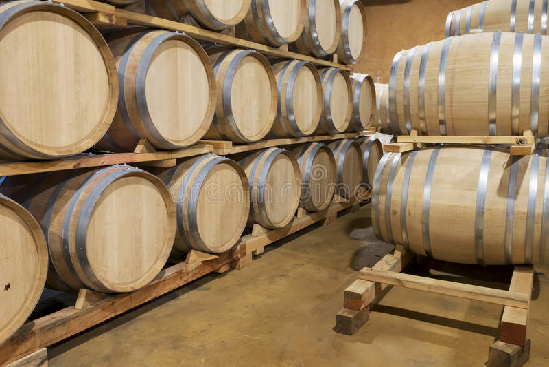 Barriles de vino del roble, Baja, México fotografía de archivo