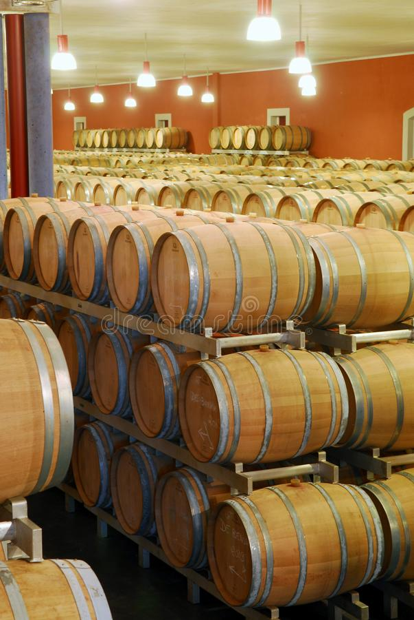 Barriles de vino empilados en un sótano fotos de archivo