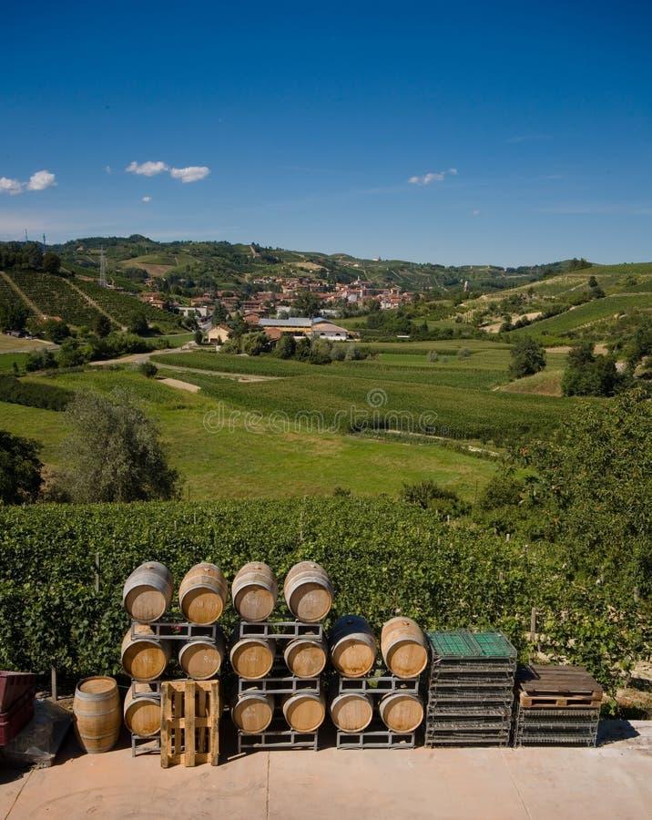 Barriles de vino en Italia imagenes de archivo
