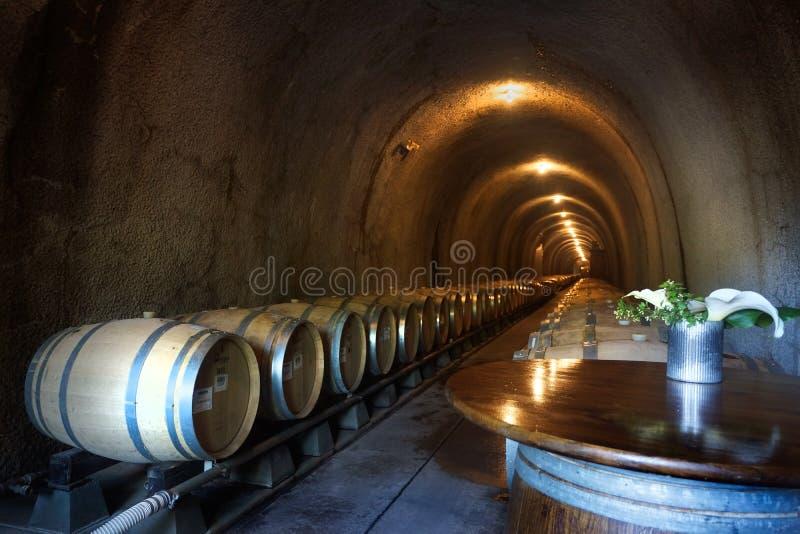 Barriles de vino en la cueva oscura horizontal fotografía de archivo libre de regalías