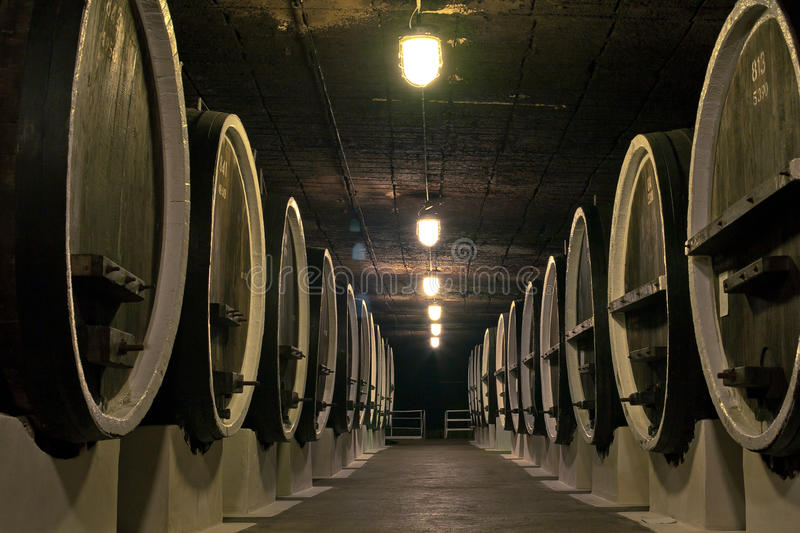 Barriles de vino en los sótanos de winemakers imagen de archivo libre de regalías