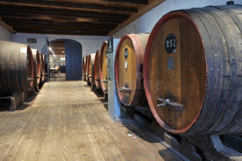 Barriles de vino grandes en vinyared en Barossa Valley en sur de Australia foto de archivo