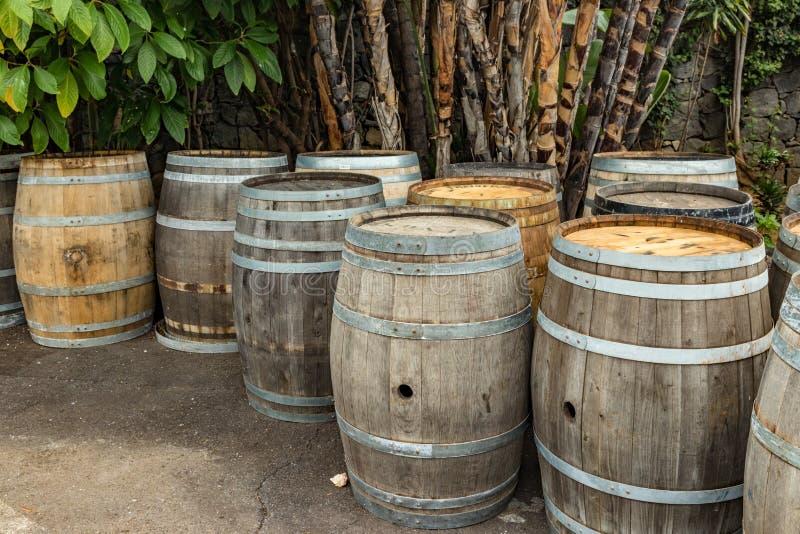Barriles de vino de madera viejos del vintage en un invernadero de Tenerife, islas Canarias, España fotografía de archivo