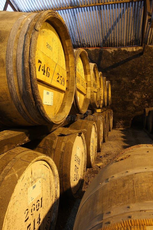 Barriles de whisky fotos de archivo