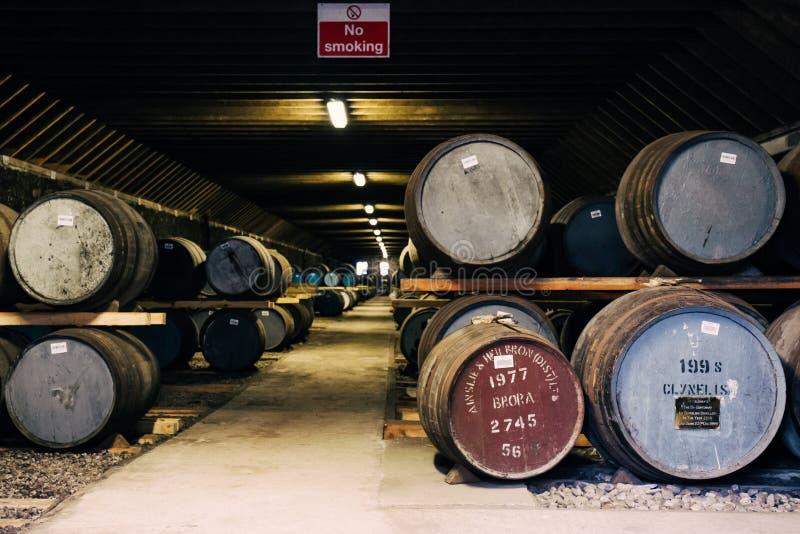 Barriles de whisky dentro del almacén de la destilería de Brora en Escocia, whisky raro de Brora en el frente imágenes de archivo libres de regalías