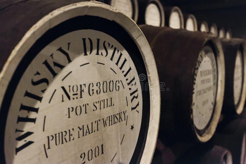 Barriles del roble del whisky fotografía de archivo