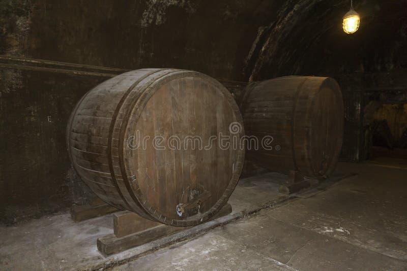 Barriles grandes viejos con el vino en sótano fotografía de archivo