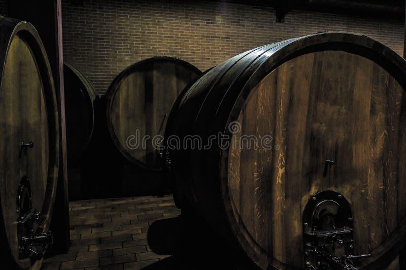 Barriles por completo de uvas enseguida después de la cosecha en Barolo Italia fotos de archivo