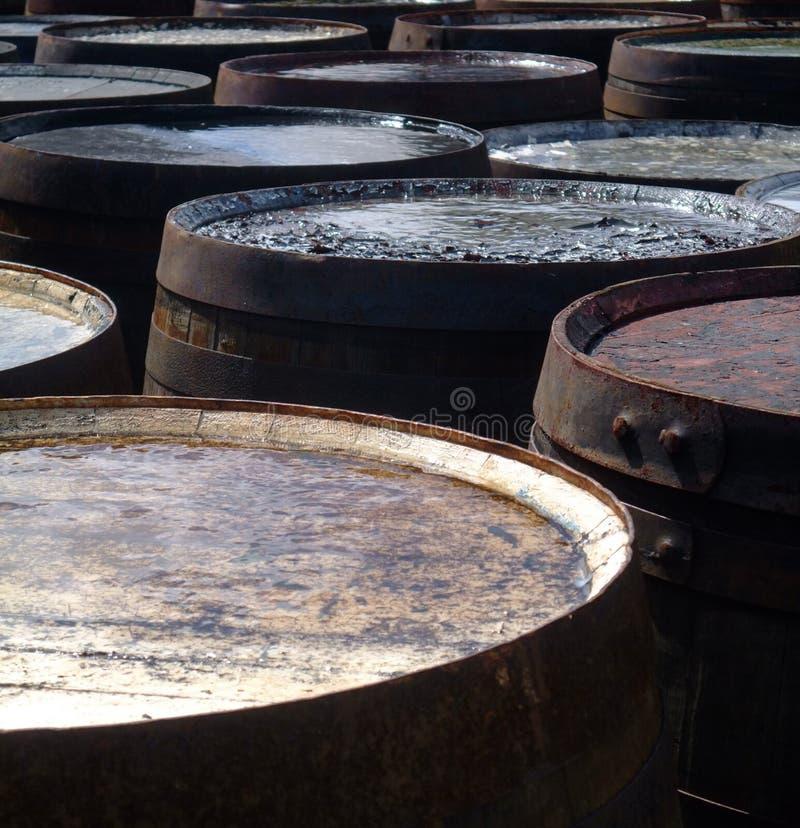 Barriles y barriles foto de archivo