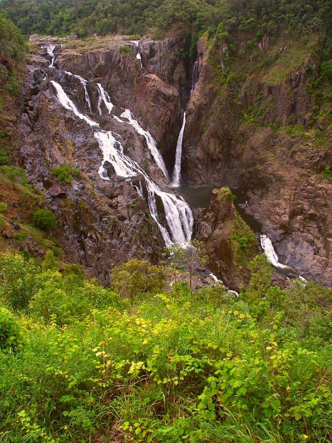 Barron Falls - Queensland, Australia stock images