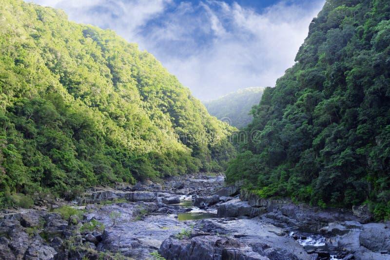 Barron Gorge 1279 imagen de archivo