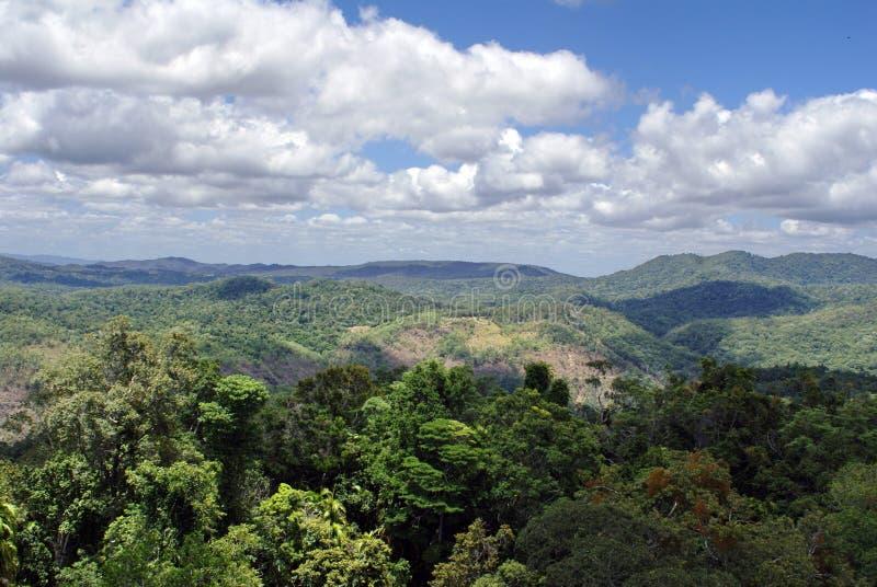 Barron Gorge National Park fotos de archivo