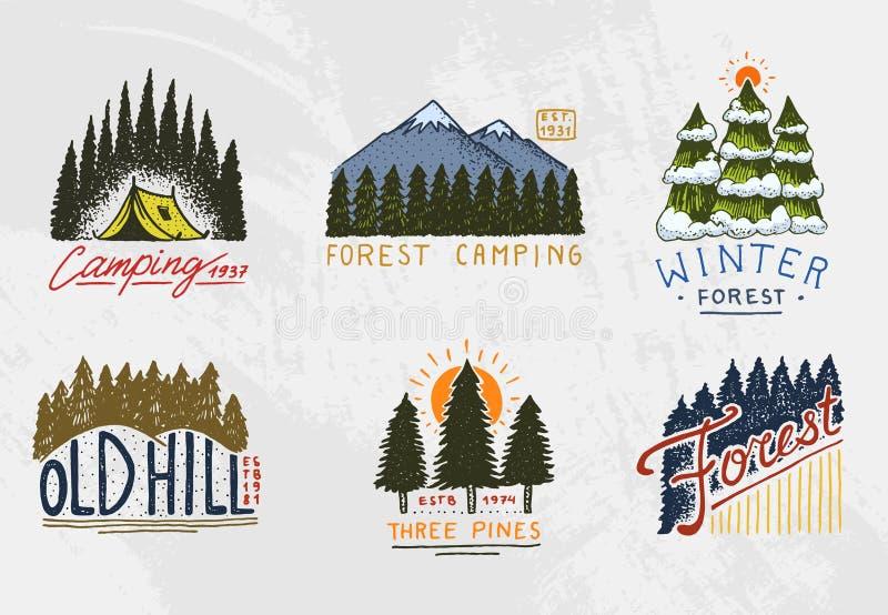 Barrskog, berg och trälogo campa och lös natur landskap med sörjer träd och kullar Emblem eller royaltyfri illustrationer