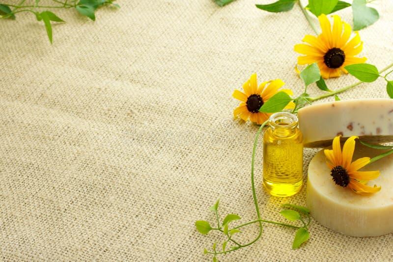 Bars de savon et d'huile essentielle image stock