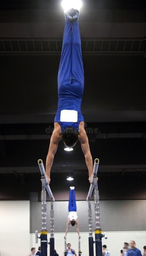 Bars Den Parallella Gymnasten Arkivbild
