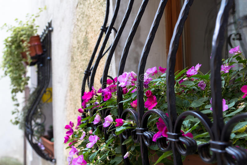 Bars and flowers. royalty free stock photography