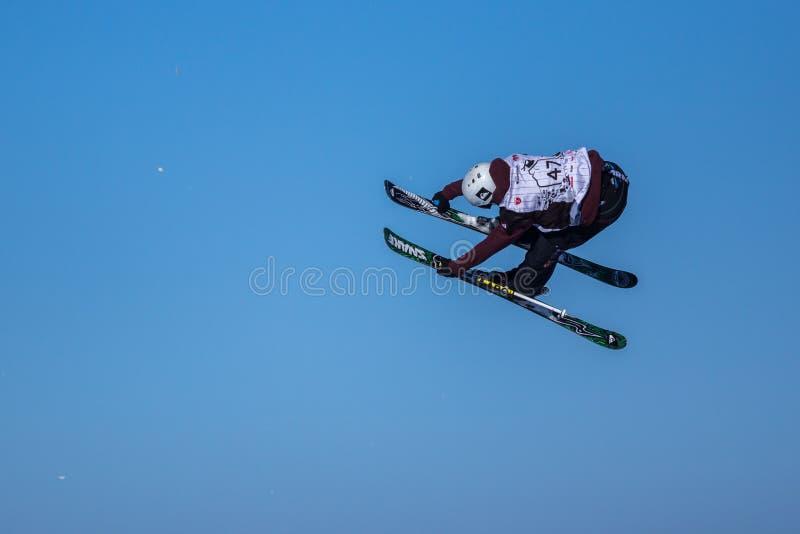 Bartek Sibiga, Polska narciarka zdjęcia stock