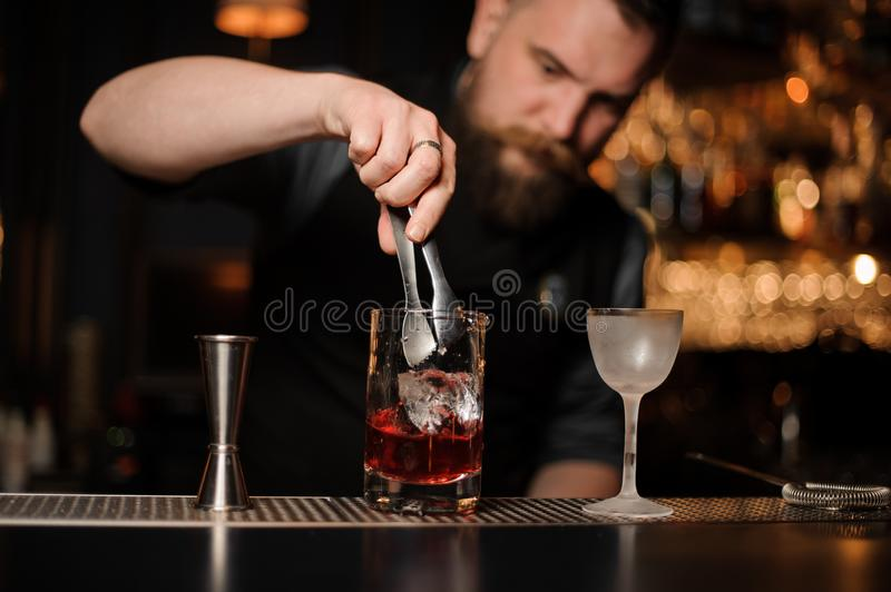 Bartender puts ice cube in alcohol cocktail. Young male bartender puts small ice cube with special tongs in alcohol cocktail standing with another glass and stock photo