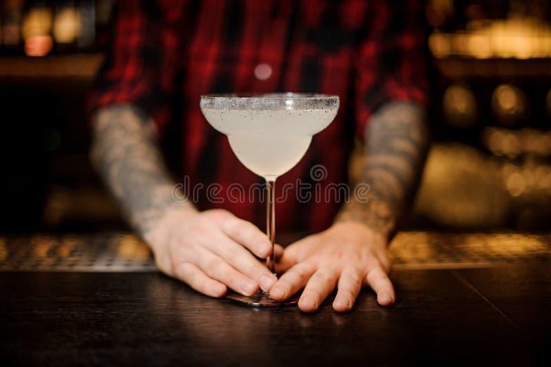 Bartender som rymmer en ny margaritacoctail i ett coctailexponeringsglas royaltyfria bilder