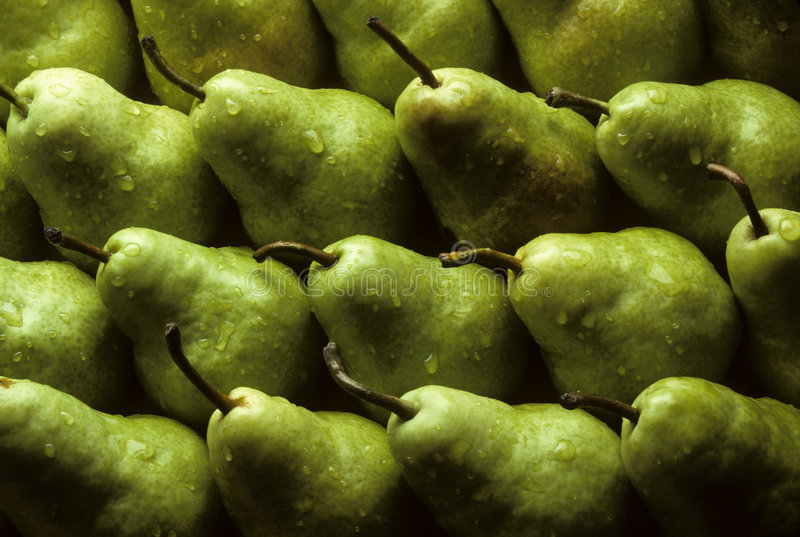 Bartlet pears. Lined up sprinkled with water stock images
