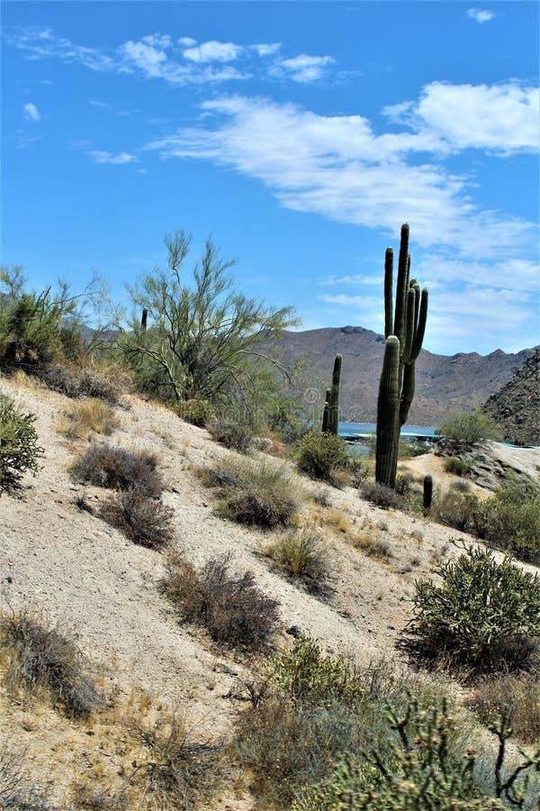 Bartlett湖水库,马里科帕县,亚利桑那州,美国风景风景视图 库存照片