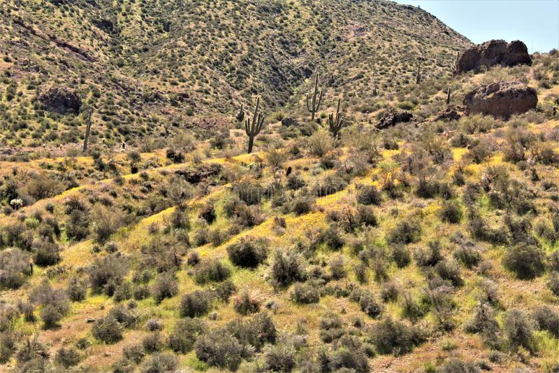 Bartlett δεξαμενή λιμνών, κομητεία Maricopa, κράτος φυσική άποψη τοπίων της Αριζόνα, Ηνωμένες Πολιτείες στοκ φωτογραφίες με δικαίωμα ελεύθερης χρήσης