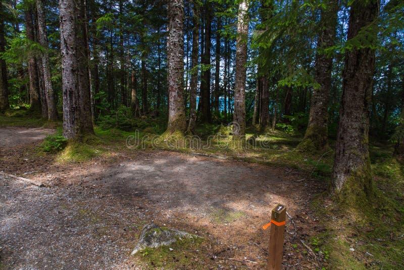 Bartlett όρμος Campground, κόλπος παγετώνων στοκ εικόνες