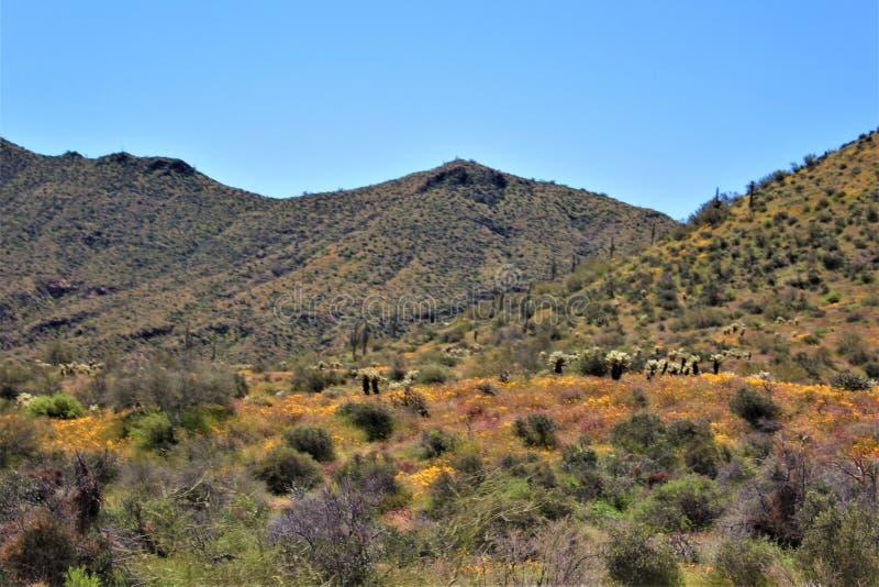 Bartlett Jeziorny rezerwuar, Maricopa okr?g administracyjny, stan Arizona, Stany Zjednoczone sceniczny krajobrazowy widok zdjęcie stock