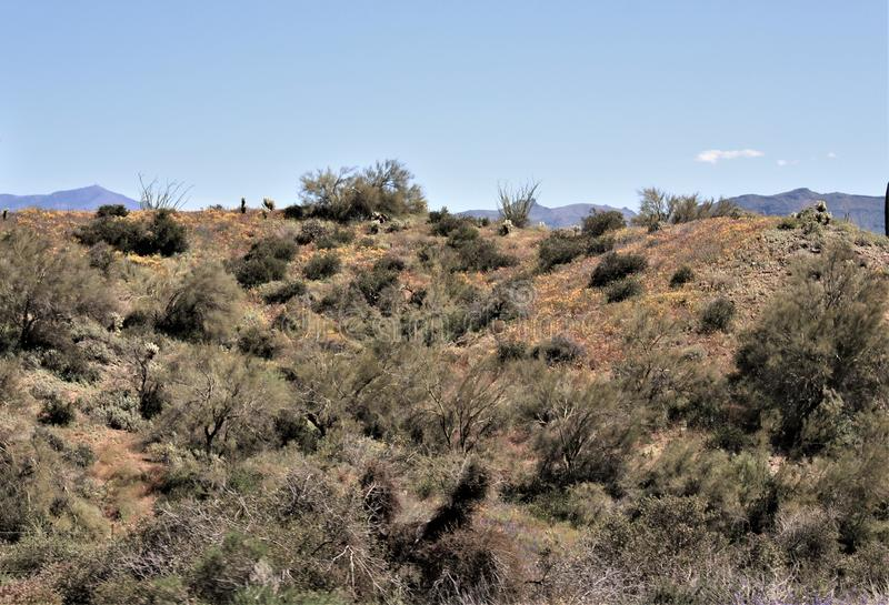 Bartlett Lake-reservoir, Maricopa-Provincie, Staat toneel het landschapsmening van van Arizona, Verenigde Staten stock fotografie