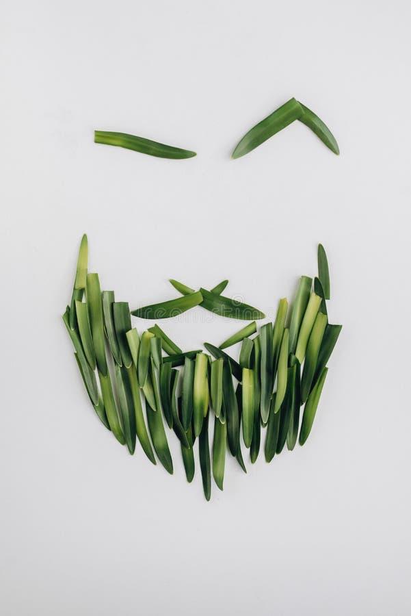 Bartmanngesicht gemacht von den natürlichen grünen Blättern auf hellem Hintergrund Flache Lage, Draufsicht stockfotos