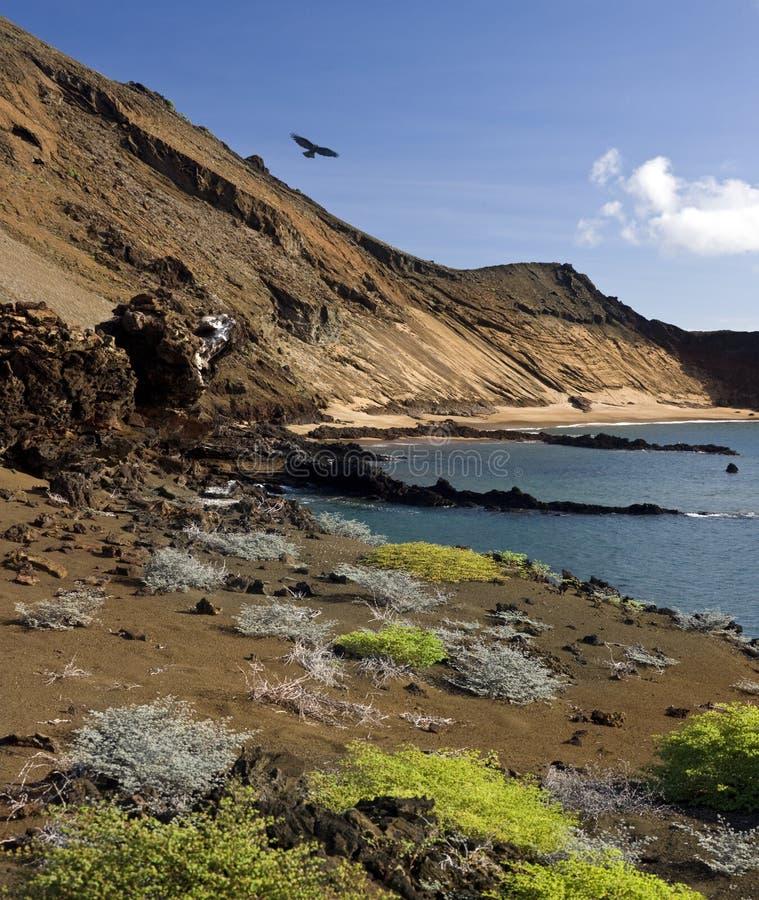 Bartolome - Galapagos Islands royalty free stock photo