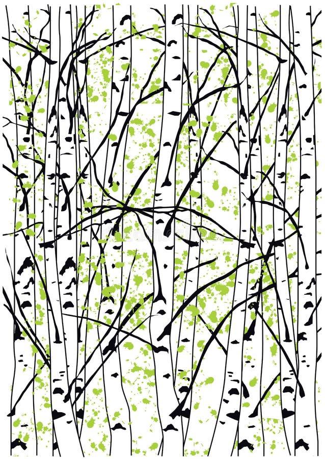 Barwi wektorową ilustrację wiosny brzozy drzewa lasowi fotografia royalty free