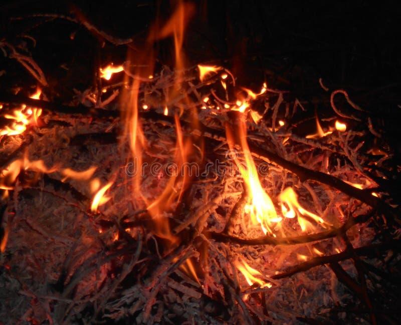 Barwiarska ognisko noc obrazy stock