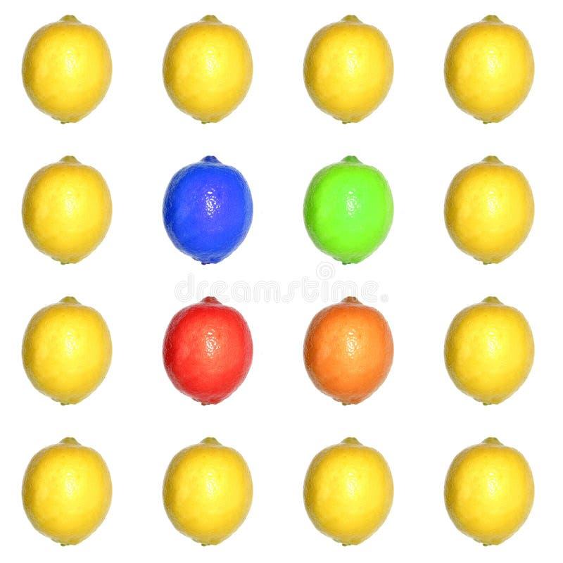 Barwiona Lemon Sieci Obrazy Royalty Free