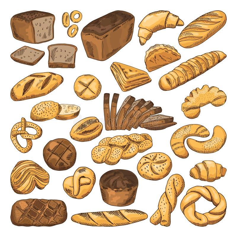 Barwiona ręka rysujący obrazki świeży chleb i różni typ piekarni jedzenie Baguette, croissant i inny, ilustracja wektor