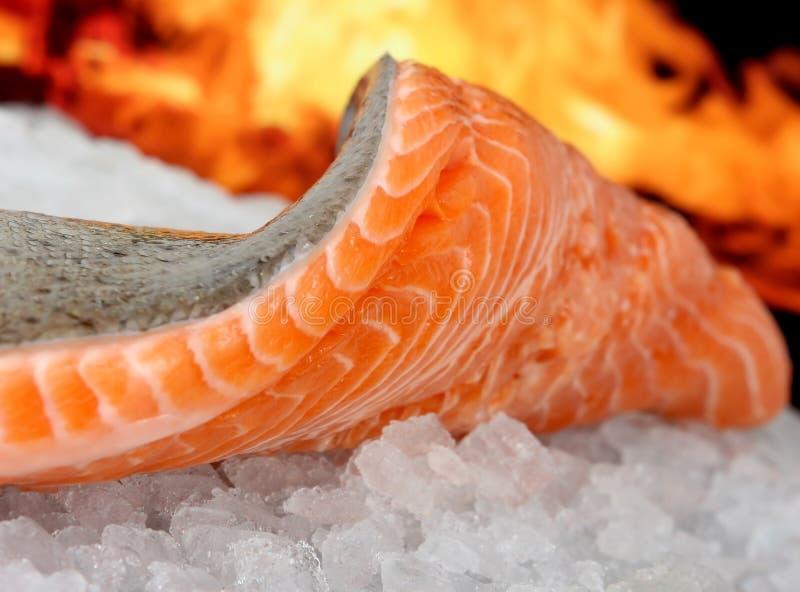 barwionej jedzenia ryb marynaty lata rose wino obrazy royalty free