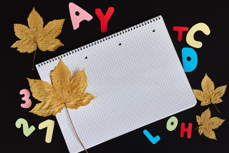 Barwioni listy, jesień liście i pusty prześcieradło notatnik na czarnym tle, obraz stock