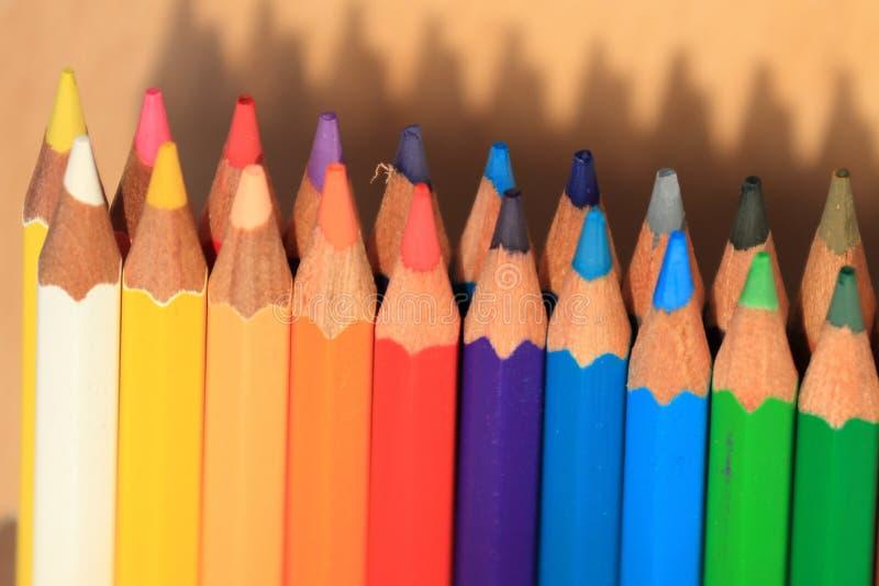 Barwioni ołówki z koszem wiedza na trawie zdjęcie royalty free