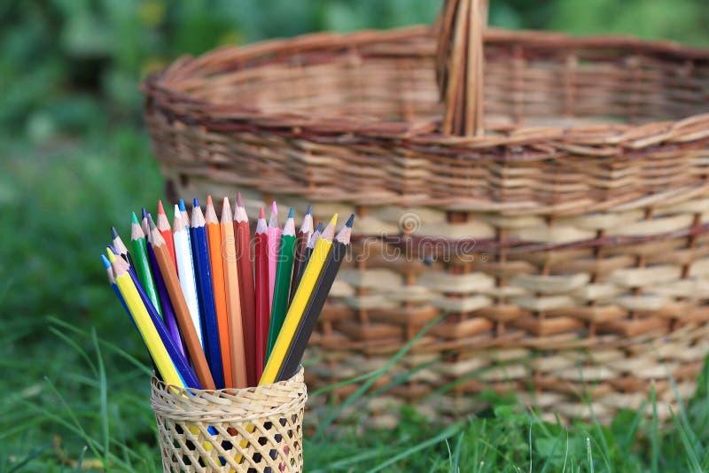 Barwioni ołówki z koszem wiedza na trawie fotografia royalty free